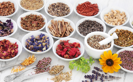 $19 for an Accredited Master Herbalist Course from International Open Academy (a $99 Value)
