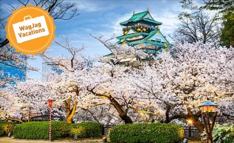 PRICE DROP! 9-Day Japan Tour with Flights, Tours, Hotels & More!