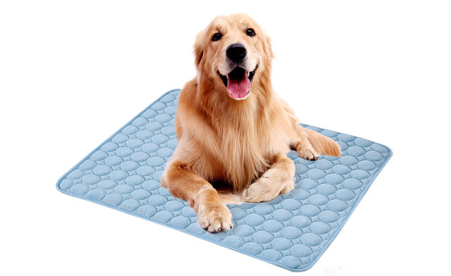 Up to 61% off a Pet Sleeping & Cooling Pad