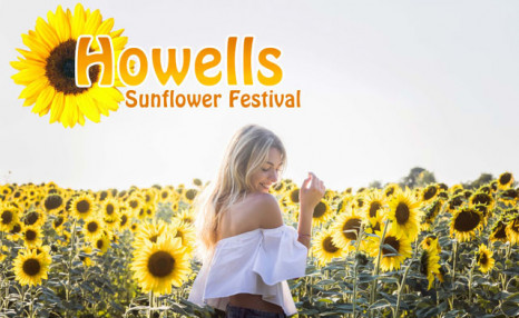 $20 for Admission for 2 People to the Sunflower Festival at Howell Pumpkin Farm (a $26 Value)
