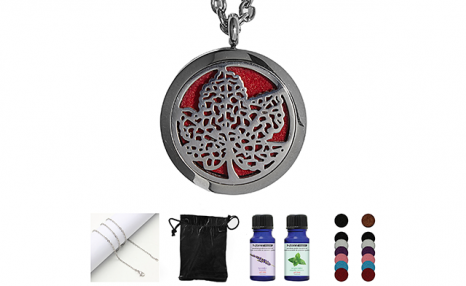 $17 for an Essential Oil Necklace Set (a $76 Value)