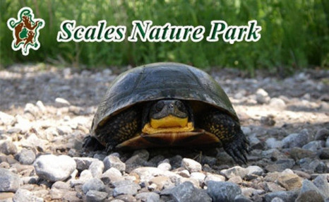 Amazing Offers for Admission and Family Passes to Scales Nature Park
