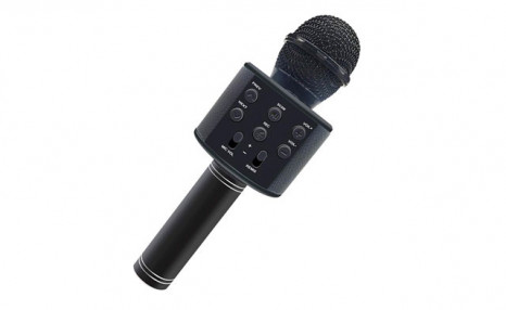$19.95 for a Wireless Microphone for Handheld Karaoke (a $49.95 Value)
