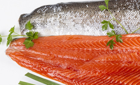 PRICE DROP!! $45 for 6 lbs of Coho Salmon Fillets (a $90 Value)