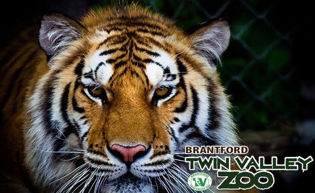 Up to 33% off at Twin Valley Zoo
