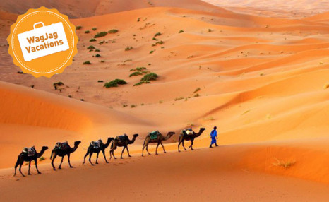 Click to view 11 Day Morocco Grand Tour