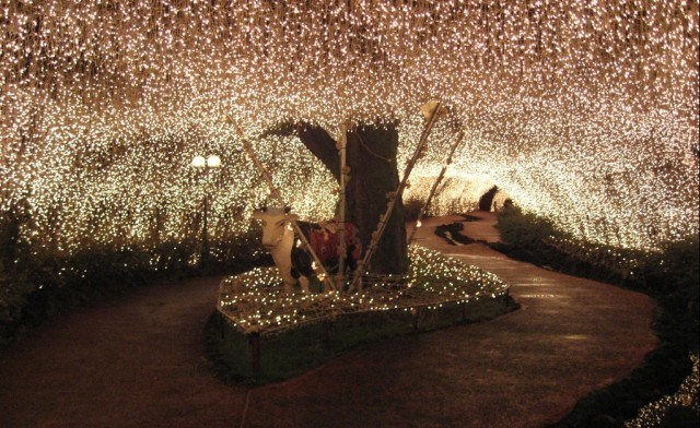 Up to 74% off Solar LED Fairy Lights