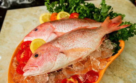 $69 for 10 lbs of Red Snapper (an $80 Value)