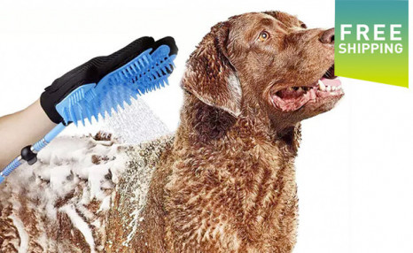 Click to view $24.90 for a 4-in-1 Pet Bathing Tool (a $68 Value)
