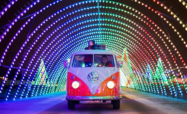 Up to 20% off the Holiday Nights of Lights Drive Thru Experience - Valid Monday - Thursday Only!