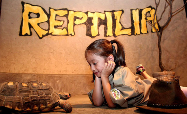 BLACK FRIDAY FLASH SALE! $10 and Up for Admission to Reptilia
