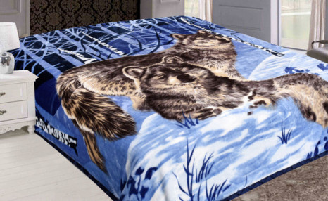 Click to view $39 for an Animal Print Blanket (a $129 Value)
