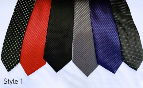 $26.95 for a Set of 6 Stylish Ties (a $120 Value)