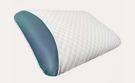 Click to view $32.95 for a Eucalyptus Infused Memory Foam Pillow (a $110 Value)