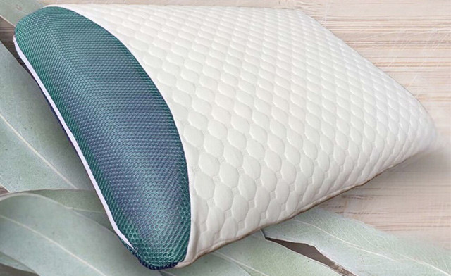 $32.95 for a Eucalyptus Infused Memory Foam Pillow (a $110 Value)