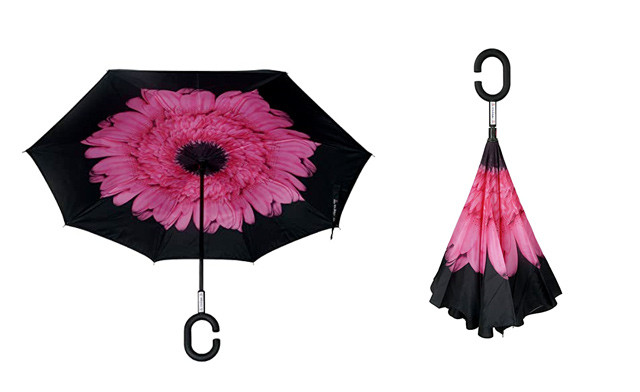 $15.95 for a Reversible Umbrella (a $49 Value)