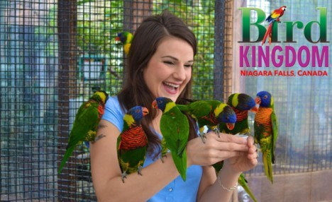 One Child or Adult Admission to Bird Kingdom