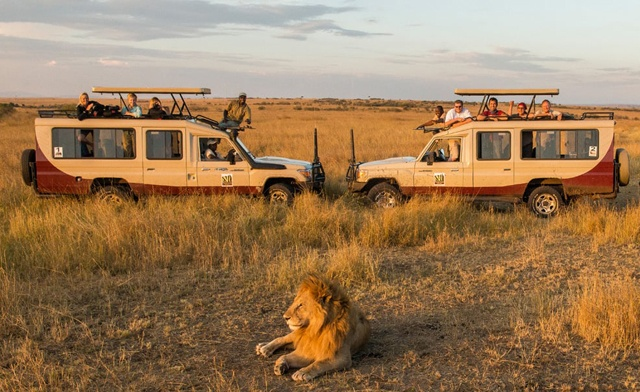 A 9-Day Safari Adventure Starting from $3,940